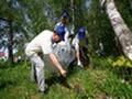 В Долгопрудном студенты выгребли из леса гору старых покрышек и баклажек
