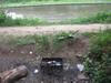 ГАТН нашел на берегу Клязьменского  водохранилища в Долгопрудном горы мусора, оставленного отдыхающими